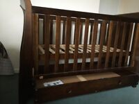 King Parrot Cot Bed - beautiful furniture