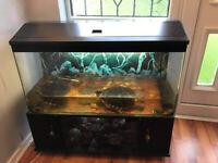 Aquarium / fish tank / turtle tank for sale