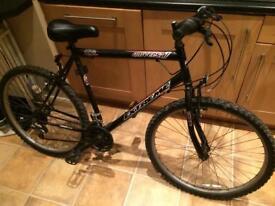 Adult teenager mountain bike bicycle