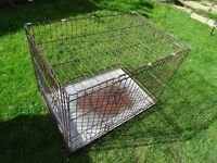 large collapsible dog cage - dog crate