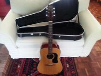 Washburn D-10N dreadnought Acoustic Guitar (with option of Gator hard case) £90