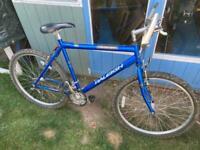 Raleigh Manta Ray mountain bike