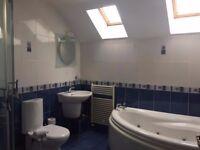 Single items or job lot ***Royal Doulton Basin*** P shaped bath & corner bath & towel warmers & more