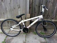 "bmx stunt bike 24"" cruiser"