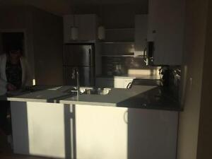 Brand New 2 bedroom condo close to Whyte Ave and U of A Edmonton Edmonton Area image 8
