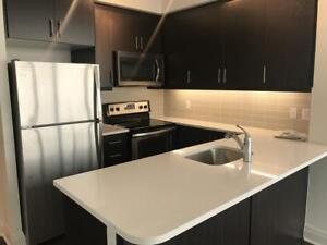 Park Towers at IQ - Luxury Condo for Rent