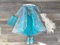 An Original Disney Store Frozen Elsa Costume