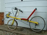 Recumbent Bicycle: Kingcycle (Medium size)