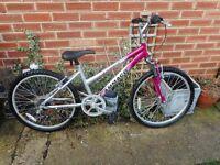 girls silver and pink ammaco 24 inch wheel bike
