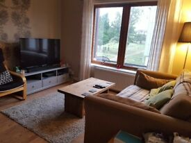 Double room to rent close to city centre - festival let