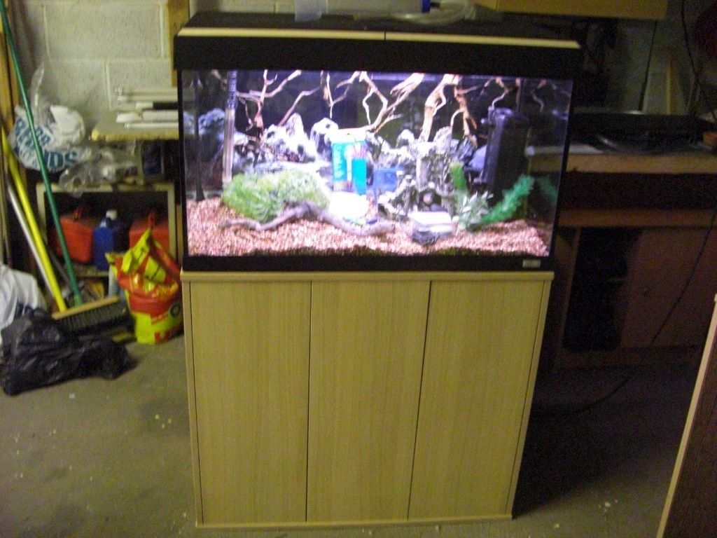 For sale fluval roma 125 litre aquarium fish tank with for Fluval fish tank