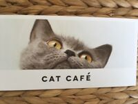 Cat Cafe gift voucher, Manchester