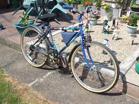 mans/boys mountain bike