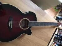 Ashton Acoustic-Electric Full Size Guitar, Hard Case Inc