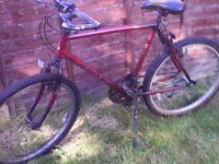 Two Mountain Bikes for Sale