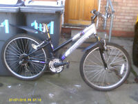 LADIES/GIRLS RALEIGH VOLITILE ALLOY MOUNTAIN BIKE IN FULL WORKING ORDER (£35 NO OFFERS)