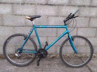 mens bike 26'' apollo