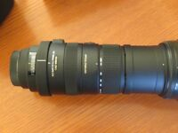 sigma 150-500 f5-6.3 lens (canon fitting)