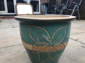 5 large plant pots