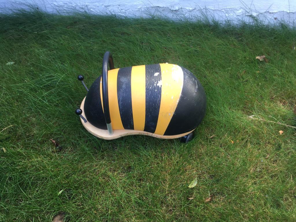 Large bee wheelybug