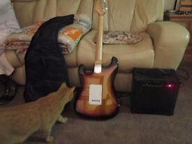 guitar amp lead case