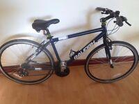 Mens Raleigh Edale hybrid bike