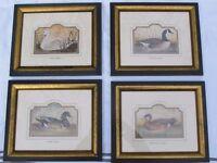 Set of 4 Frames