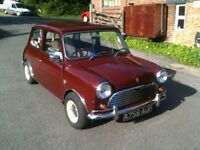 Austin Mini 1275, head turner,