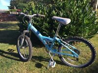 Girls junior bike