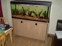 Fluval Roma 240 Aquarium & Cabinet