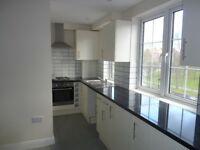 Newly Renovated Large 2 Bedroom Flat, Streatham Common