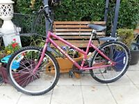 pink raleigh zest bike with basket