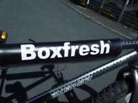 """VINTAGE BOXFRESH RALEIGH BURNER OLD SCHOOL BMX BICYCLE 20"""" SKYWAY MAG WHEELS"""