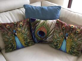Teal cushions & peacock cushions