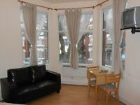 Large and Bright Studio Flat in Zone 2!