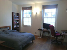 Huge double room, zone 1, all bills included, available 24th August