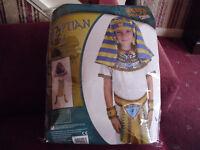 Boys Egyptian Costume age 6-8 yrs.