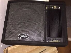 Peavey speaker of good quality Must Go. As Seen
