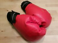 Protocol Boxing Gloves and Viper Defensive Mitts