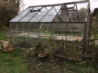 Greenhouse 10 x 12 feet. Some panes of glass missing.