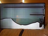 Tv lg 49 broken screen