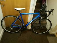 Raleigh road bike with large frame size