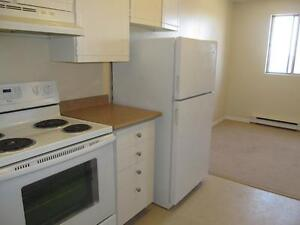 2 Bedroom Spacious Suites Surrounded by Beautiful Parks! Kitchener / Waterloo Kitchener Area image 4