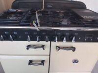 Burgen cooker