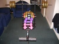 Gym Bench and weights £120 ONO