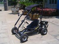 SALE: 6.5hp 200cc Drift II Go-Kart w Roll Cage