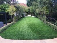 Gardening, Driveway, Patio, Pathway, Garden Wall, Fencing, Turfing, Decking
