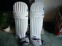 cricket pads gloves bag and bat