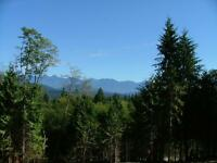 Multi use acreage five minutes from the ferry at Langdale