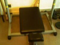 vertical leg press with cast iron weights